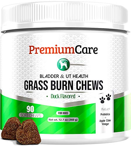 PREMIUM CARE Grass Burn Spot Chews for Dogs - Made in USA - Dog Pee Lawn Spot Saver Treatment Caused by Dog Urine - Cranberry, Apple Cider Vinegar, DL-Methionine Grass Saver Treatment for Dogs Rocks