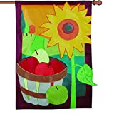 Premier Kites 52889 House Applique Flag, A Taste of Autumn, 28 by 40-Inch Review