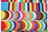 Premium Tissue Paper Squares (480 Large Circles - 4 Inches)