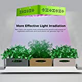 MarsHydro LED Grow Lights Safety Glasses for Indoor Gardens Greenhouses Hydroponics Protective Goggles Against UV IR Rays Protective Eyewear