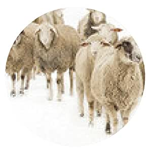 alfombrilla de ratón Las ovejas del rebaño - ronda - 20cm