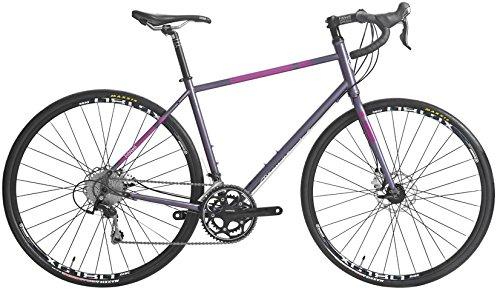 Fitwell Riley Fahrlander II Bike Mens Sz 54.9cm (L)