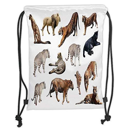 Custom Printed Drawstring Backpacks Bags,Safari Decor,Collection of Tigersand other Big Wild Cats Predatory Feline Zoo Lying Standing Background, Soft Satin,5 Liter Capacity,Adjustable String Clo ()