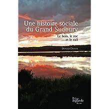Une histoire sociale du Grand Sudbury: Bois, le roc et le rail (Le)