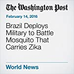 Brazil Deploys Military to Battle Mosquito That Carries Zika | Alex Cuadros