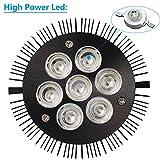 Black Light Bulb, KINGBO 14W LED UV Black Light E26