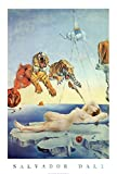 Salvador Dali Dream Caused by the Flight of a Bee a Second Before Awakening Art Print Poster - 24x36 Poster Print, 24x36