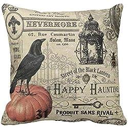 Home Pillow case halloween and Xmas Festival pillow case (18 X 18 inch, Halloween 1)
