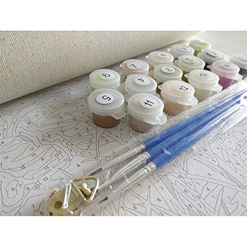 Newsight DIY Oil Painting Paintworks Paint by Number for Kids and Adults 16 x 20Lovely Snowman