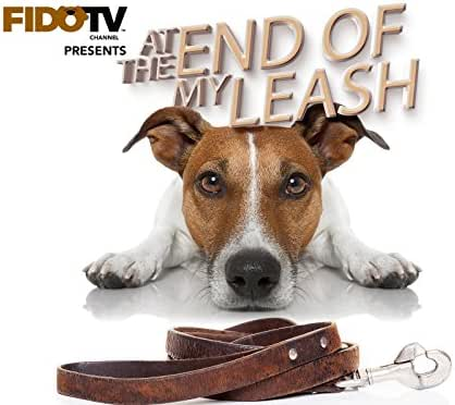 At the End of My Leash