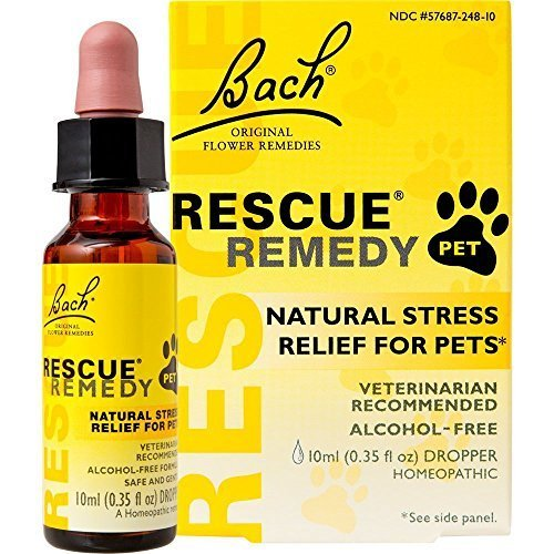 Bach Rescue Remedy Pet FamilyValue 4Pack (10ml)-cun-Bach