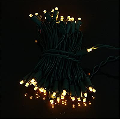 FEITA Warm White,LED Mini Christmas Light Set,39'Long ,100 Lights with Wide Angle Bulb (5mm),Green Wire for Holiday Party, Tree wrap, Patio Garden, Home Decor