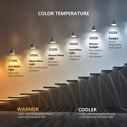 Treatlife Smart Light Bulb, Dimmable Multicolor and White LED Bulb, Compatible with Alexa, Google Assistant, A19 E26 8W (60W Equivalent), No Hub Required, 1 Pack