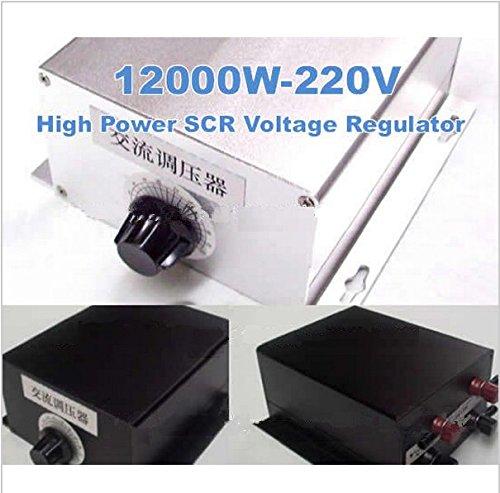 GOWE 12KW 12000 W 220 V Spannungsanzeige Dimmer verstellbar 0-220V Wechselspannung Regler für Spannung EdelstahlLeuchten Geschwindigkeit Temperatur