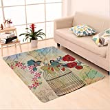 Nalahome Custom carpet Birds & Cage French Vintage Design Wall Shiny Silky Saten area rugs for Living Dining Room Bedroom Hallway Office Carpet (5' X 7')