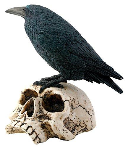 Raven on Skull Collectible Bird Crow Skeleton Figurine Statue Model -