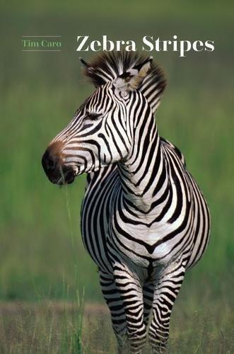 zebra stripes amazon co uk tim caro 9780226411019 books
