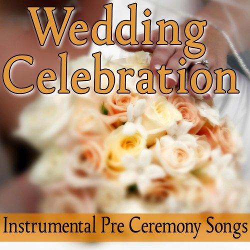 Amazon Wedding Celebration