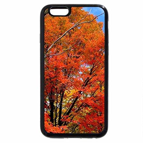 iPhone 6S / iPhone 6 Case (Black) Rusty tree 3