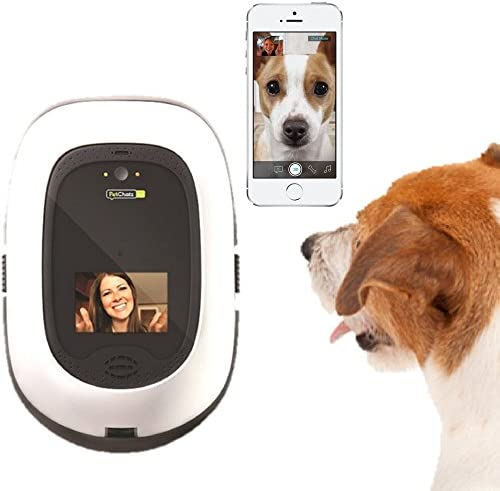 PetChatz HD two-way premium audio HD video pet treat camera w DogTv, smart video recording, calming aromatherapy, and motion sound detection as seen on The Today Show
