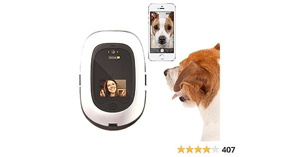PetChatz HD: Two-Way Premium Audio and Video ... - Amazon.com