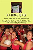 A Chance to Fly, Byron Shewman, 0595377947