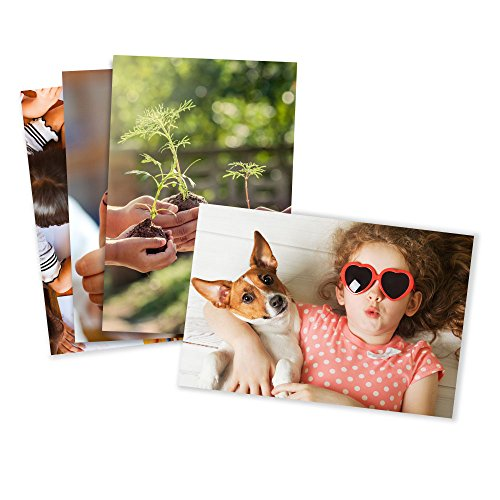 - Photo Prints - Glossy - Standard Size (4x5.3)