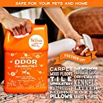 ANGRY ORANGE Ready-to-Use Citrus Pet Odor Eliminator Pet Spray - Urine Remover and Carpet Deodorizer for Dogs and Cats 9
