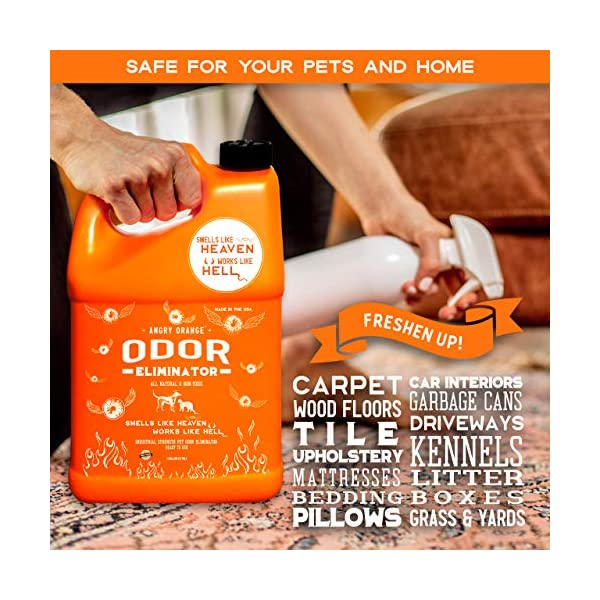 ANGRY ORANGE Ready-to-Use Citrus Pet Odor Eliminator Pet Spray - Urine Remover and Carpet Deodorizer for Dogs and Cats 4