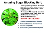 SUGAR SUPPRESS 60 - Stops Sweet Craving and