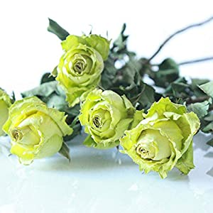 Artificial Flowers Green