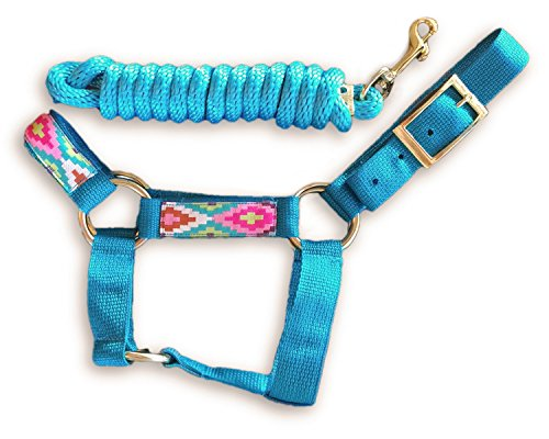 HalterUp Miniature Horse Halters and Lead Ropes (2 item bundle) available in 10 colors (Turquoise, Medium)