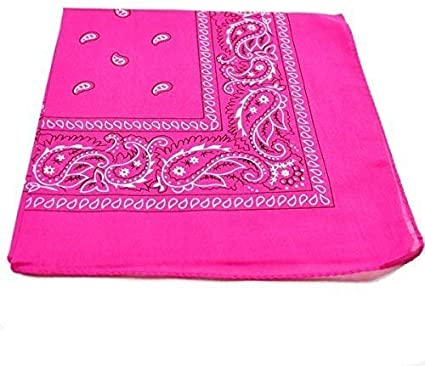 22 x 22 Inch Cotton Bandanas Paisley Headbands Cowboy Bandana Handkerchiefs with Mesh Bags for Men and Women