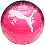 PUMA North America Spirit 2 Soccer Ball (083079)
