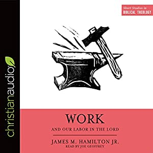 Work and Our Labor in the Lord Audiobook