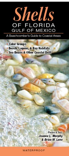 - Shells of Florida-Gulf of Mexico: A Beachcomber's Guide to Coastal Areas