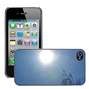Hot Style Cell Phone PC Hard Case Cover // M00310528 Sun Sky Blue Rays Nature Tree // Apple iPhone 4 4S 4G