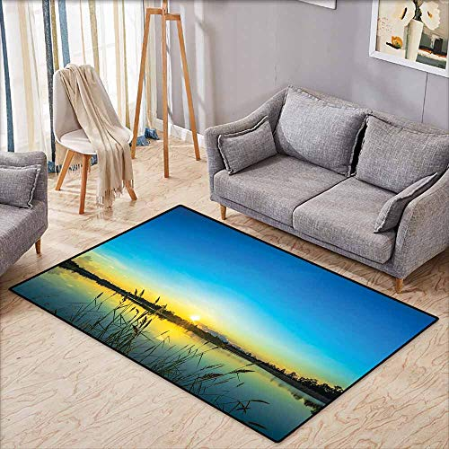 Pet Rug,Lake Sun Rising in Blue Sky Quiet Outdoors with Reed Bed Serenity in Country,Children Crawling Bedroom Rug,4'7