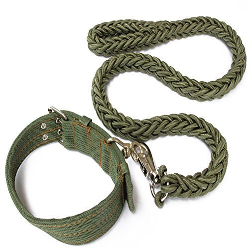 Gold Wing Heavy Duty Nylon Braided Harness Leading Leash + Adjustable Collar for Pet Dog Cat Army Green ()