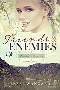 Friends & Enemies by Terri Wangard ebook deal