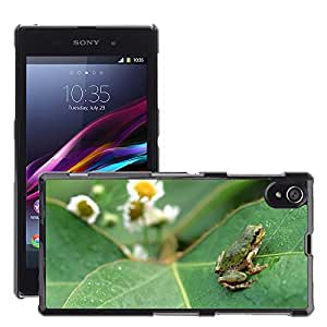 Hot Style Cell Phone PC Hard Case Cover // M00046968 frog animals big reptiles frogs leaf // Sony Xperia Z1 L39H