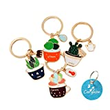 Carykon Metal Cactus Style Succulent Plant Shaped Keychain Key Holder, Set of 4