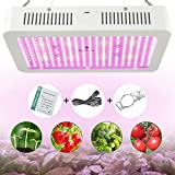 LED Grow Light 2000W Full Spectrum Led Light Hanging Lamp for Greenhouse Hydroponic Indoor Plants Growing Vegetables and Flowers