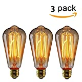 KINGSO 3 pack Vintage Edison Bulb E27 Base 60w ST64 Antique Filament Tungsten Squirrel Cage Style 19 Anchors Incandescent Bulbs for Home Light Fixtures Decorative Glass 220V