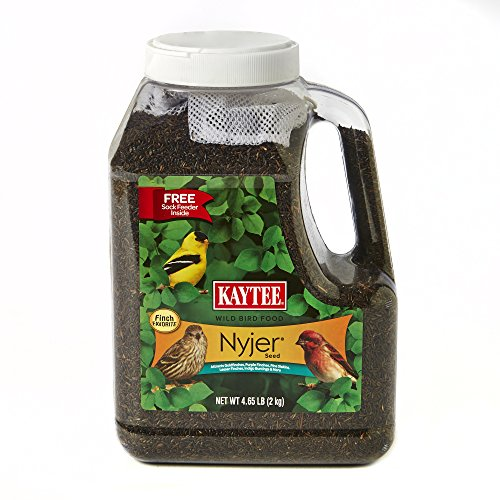 Kaytee Nyjer Bird Seed Jug with Sock, 4.65-Pound (Best Bird Feeder For Niger Seed)