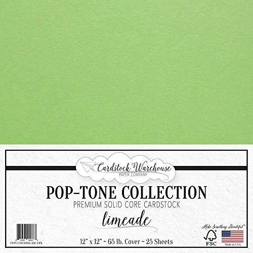 Limeade Green Cardstock Paper - 12 x 12 inch 65 lb. Premium Cover - 25 Sheets from Cardstock Warehouse ()