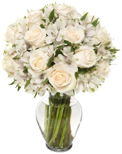 Benchmark Bouquets Elegance Roses and Alstroemeria, With Vase (Fresh Cut Flowers) by Benchmark Bouquets