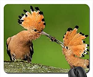 beautiful birds Mouse Pad, Mousepad (Birds Mouse Pad, 10.2 x 8.3 x 0.12 inches)