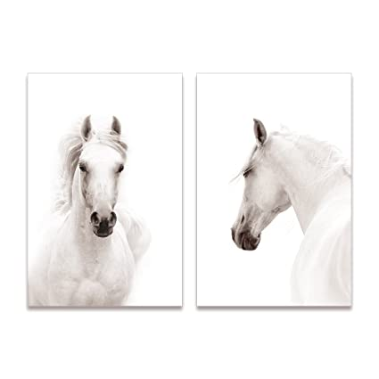 Amazon.com: SUMGAR Canvas Wall Art White Horse Animal Paintings for ...