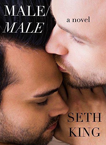 Male/Male: A Novel